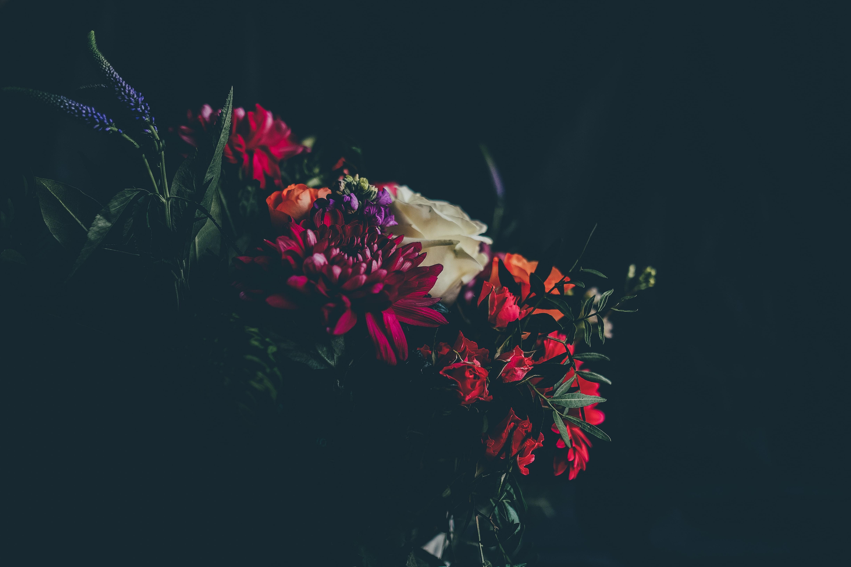 En blombukett på svart bakgrund.