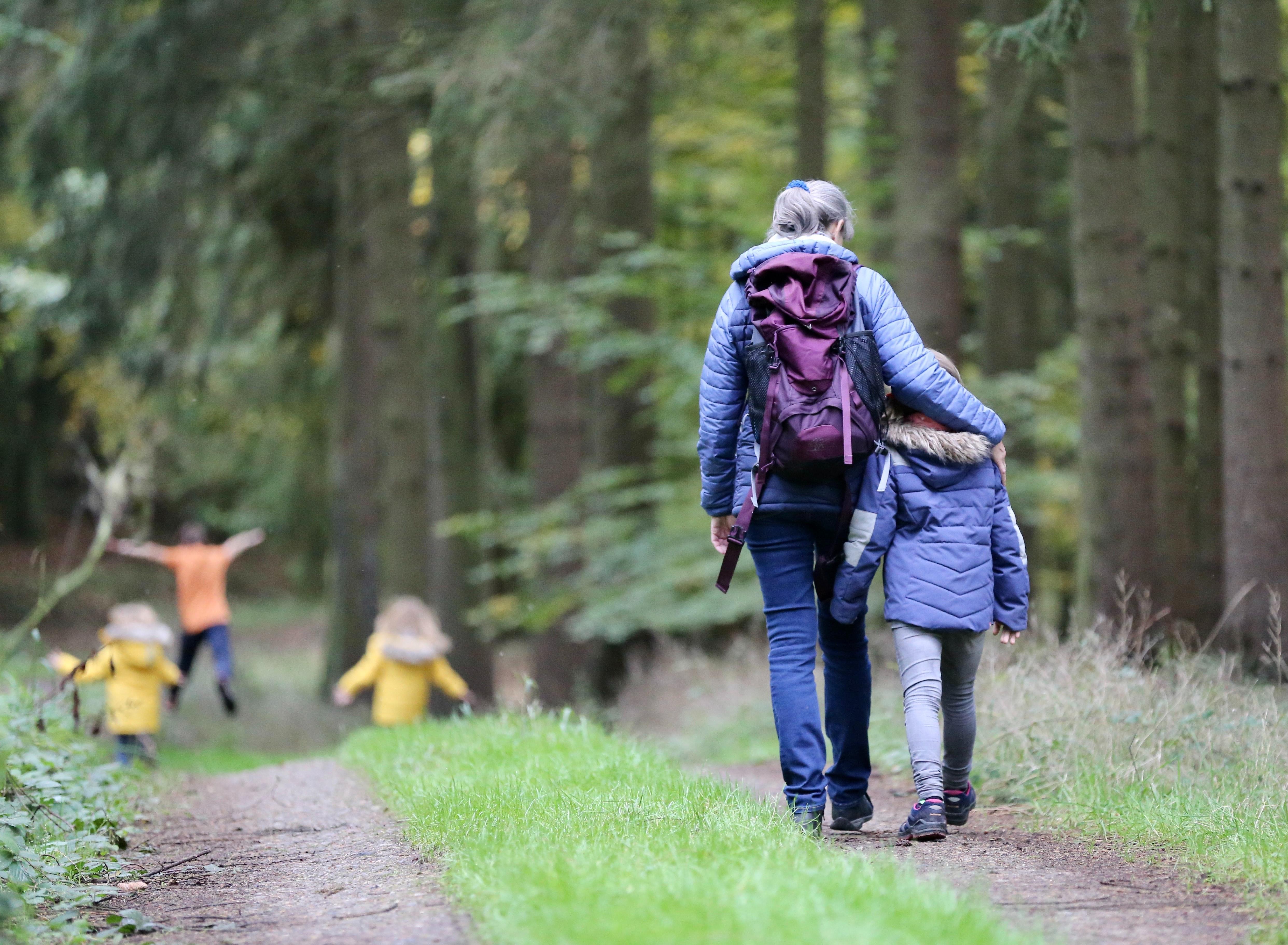 Kuvituskuvassa lapsia aikuisen kanssa metsässä ulkoilemassa.
